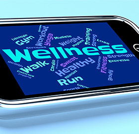Company Wellness Plans
